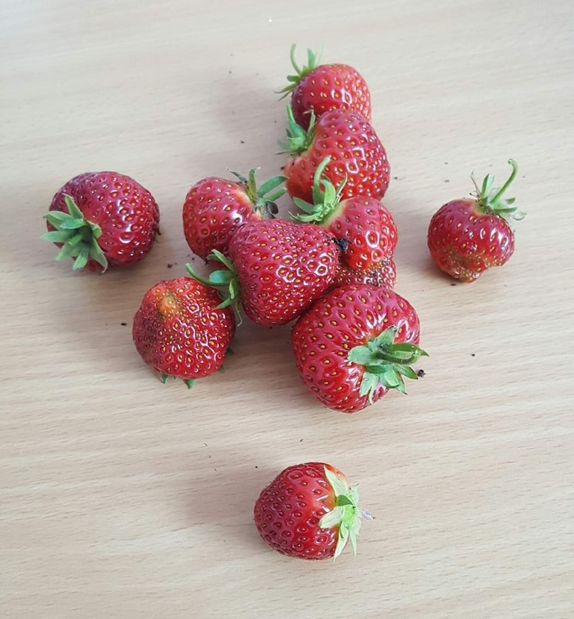 Strawberries….